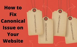 How To Fix Canonical Issues In A Website: All You Need To Know