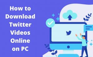 Read more about the article How to Download Twitter Videos Online?